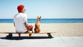Tierfotografie: Gutes Equipment und Geduld führen zum Erfolg