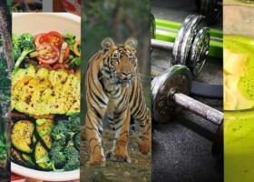 Motiviert ins neue Jahr – Die besten Fitness Übungen für Zuhause