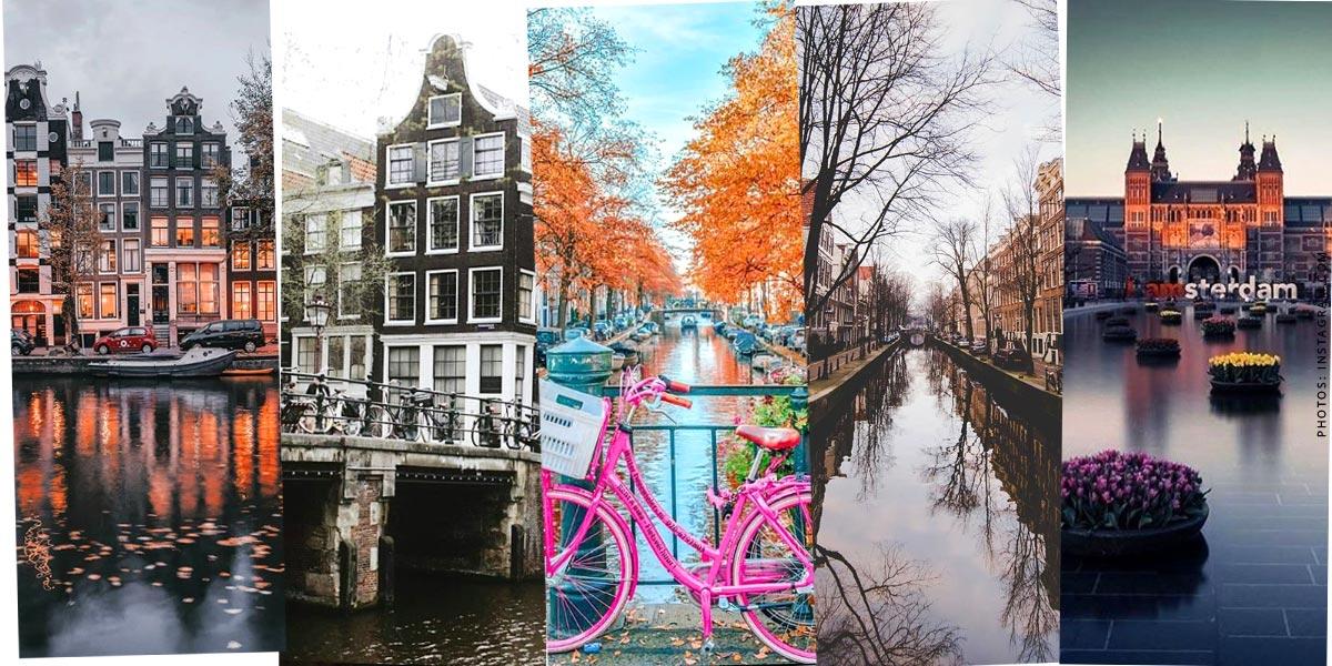 Holland: Urlaub mit Kind & Hund - Sightseeing, Hotels & Meer