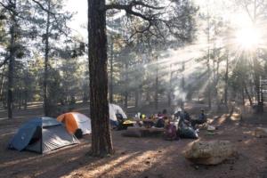 Schwarzwald: Natur, Wellness & Camping - Urlaub & wandern im Gebirge