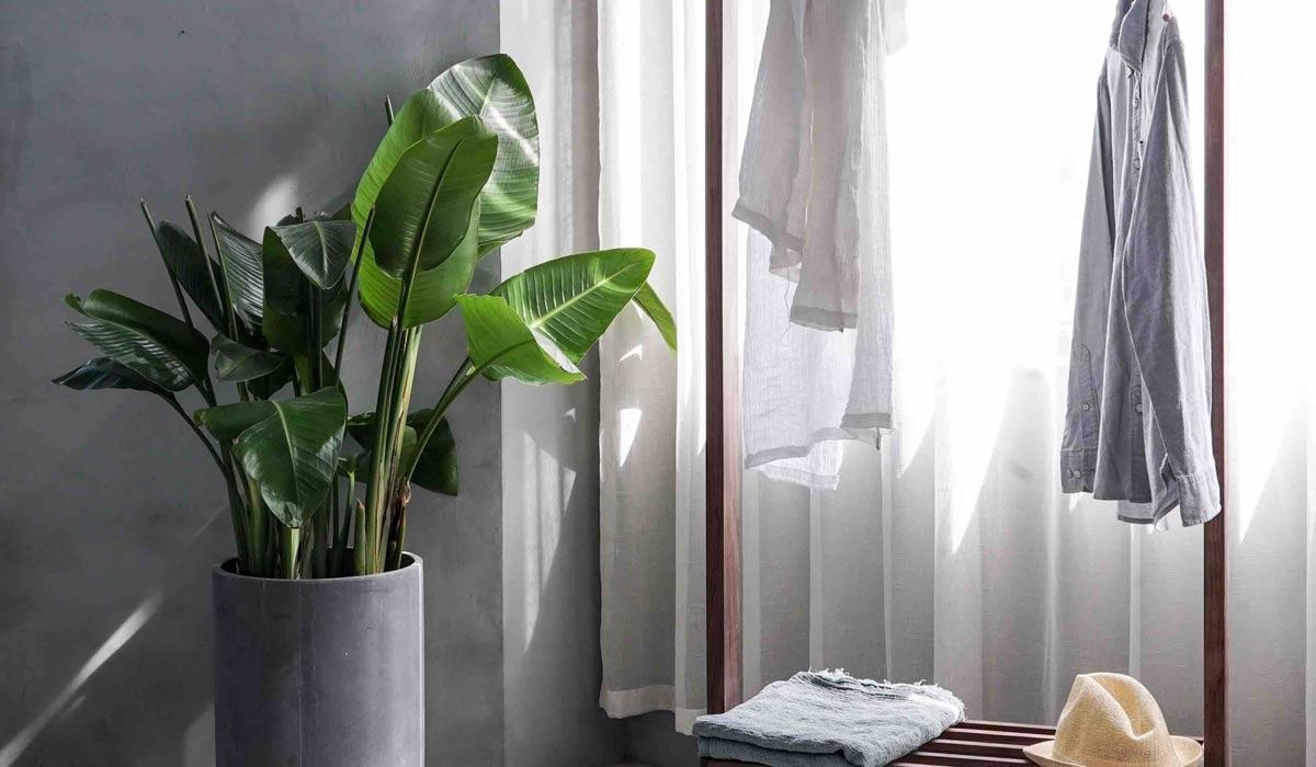Kunst des minimalistischen Lebens: Von der Kleidung bis zur Wohnung