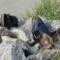 Sommerschuhe für Damen: Sandalen, Zehentrenner, Pantoletten & Co. – Top 5